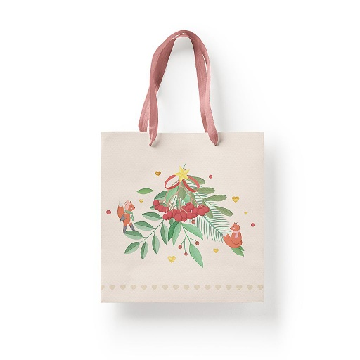 [GB05 25 X 25] GIFT BAG 05WW 25 X 25 CM